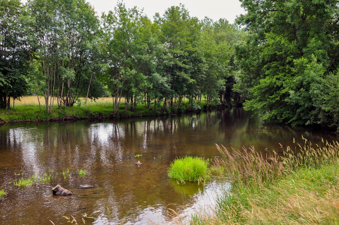Fédération de pêche de Haute Saône